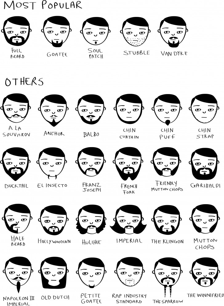 pictures of facial hair styles movember beard styles 187 chartgeek 8731 | sketches1 728x992